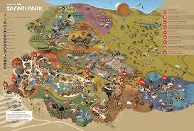 san diego zoo safari park tiger trail concept sketch early