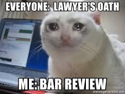 Lawyer Cat Meme - everyone lawyer s oath me bar review crying cat meme generator