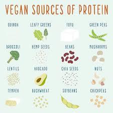 protein on a low fodmap vegan diet the fodmap friendly vegan