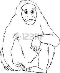 uakari animal coloring pages monkey black and white cartoon