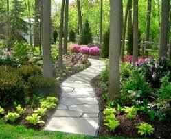 rustic garden shade garden champsbahrain com
