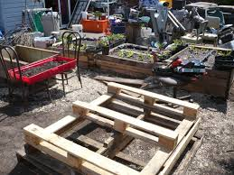 Raised Garden Beds From Pallets - file raised bed pallet garden jpg wikimedia commons