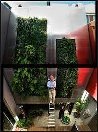 garden wall singapure places to visit pinterest walled