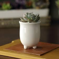 Cute Succulent Pots Popular Ceramics Pot Buy Cheap Ceramics Pot Lots From China