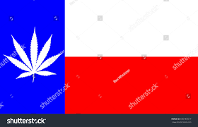 Texaa Flag Texas Flag Marijuana Leaf Stock Illustration 506783617 Shutterstock