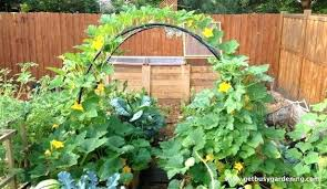 Garden Layout Tool Garden Layout Tool Elcorazon Club