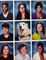 school yearbook pictures therapy dog honored in high school yearbook care2 healthy living