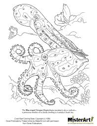 coral coloring pages to download and print for free