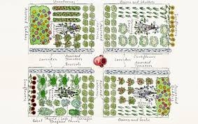 Companion Garden Layout Companion Planting Vegetable Garden Layout Garden Layout