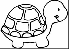 good turtle animal coloring page with color page dokardokarz net