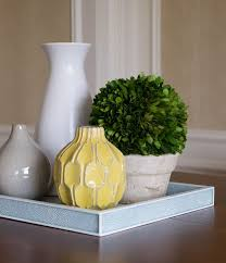 West Elm Vases 642 Best Embellish Images On Pinterest Indoor Plants Cactus And