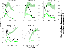 inference of quantitative models of bacterial promoters from time