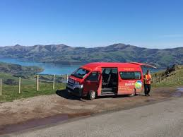 stunning day in akaroa with scenic mail run picture of eastern