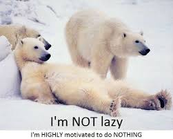 Lazy Day Meme - 50 very funny lazy meme stock golfian com
