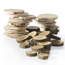 Birch and Wood Slices