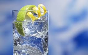 vodka tonic fever tree nb gin blog