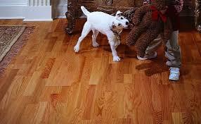 great top engineered wood floors engineered hardwood floors and