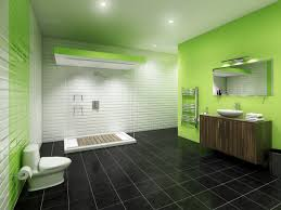 interior marvelous green black bathroom decoration using black