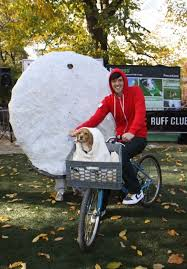Human Dog Halloween Costumes 30 Duo Diy Halloween Costumes Images