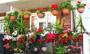 Small Terrace Garden Design Ideas Terrace Garden Design Pictures Top Green Balcony Terrace Garden