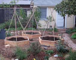 Garden Raised - advantages and disadvantages of raised bed vegetable gardening