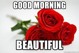 Good Morning Beautiful Meme - good morning beautiful 3 roses meme generator
