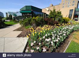 Botanical Garden Fort Wayne Foellinger Freimann Botanical Conservatory Of Fort Wayne Indiana