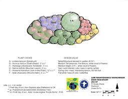 shade native plants design idea for shady rock garden new england google search