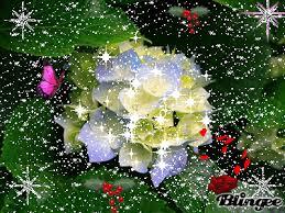 imagenes bonitas que brillen gifs hermosos cosas bonitas encontradas en la web