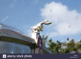 Kenworth Hood Mascot Stock Photo Royalty Free Image 71500334 Alamy
