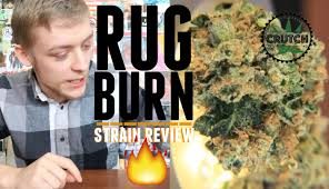 Rug Burn Rug Burn Weed Strain Review Crutch Youtube