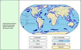 Coral Reefs Of The World Map by 6th 8th Grade Science Learning Activity Aquatic Biomes Learning