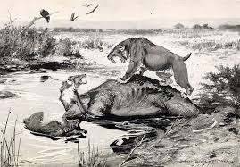 5 prehistoric predators ice age north america owlcation