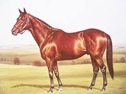 nashua reproduced painting richard stone reeves horseracing