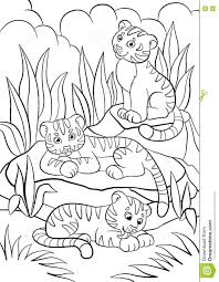 coloring pages wild animals three little cute baby tigers stock