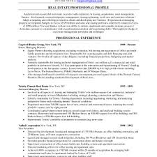 Automotive Resume Template Consulting Resume Examples Resume Example And Free Resume Maker