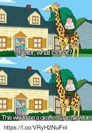 Giraffe Hat Meme - 25 best memes about giraffe giraffe memes