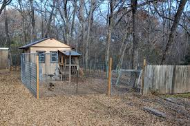 dog kennels belding u0027s country oaks beagles