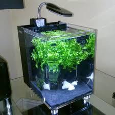 designer aquarium designer acrylic aquarium aquarium decorators manufacturer in