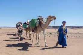 camel tents 2015