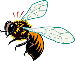 bee clipart beehive vintage bee hive clipart image 20969