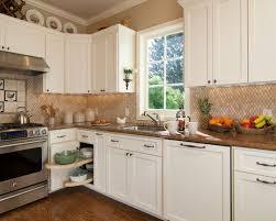 Blind Corner Kitchen Cabinet Blind Corner Cabinet Houzz