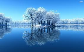 lake reflecting the frosty trees walldevil