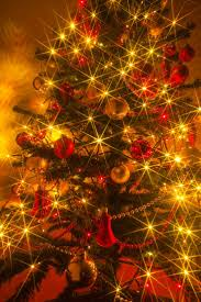 110 best christmas trees images on pinterest christmas tree