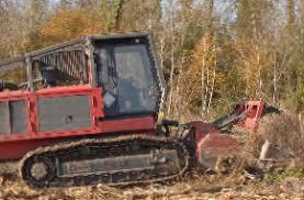 stump stump removal emergency tree removal lyons ga