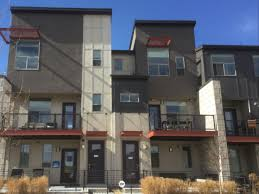 row homes rowhomes at stapleton in denver by thrive home builders