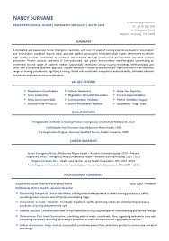 Icu Nurse Resume Example by Professional Resume Writing Service For Nursesis A Professional