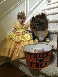Beautiful Halloween Costumes 25 Dog Halloween Costumes Ideas Dog Halloween