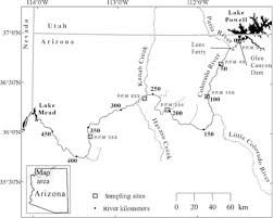 Colorado River Map by Mercury And Selenium Are Accumulating In The Colorado River Food