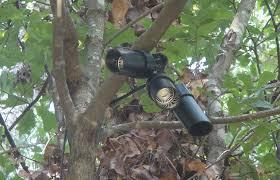 Landscape Lighting Supplies Outdoor Tree Lighting Supplies Home Design Hay Us